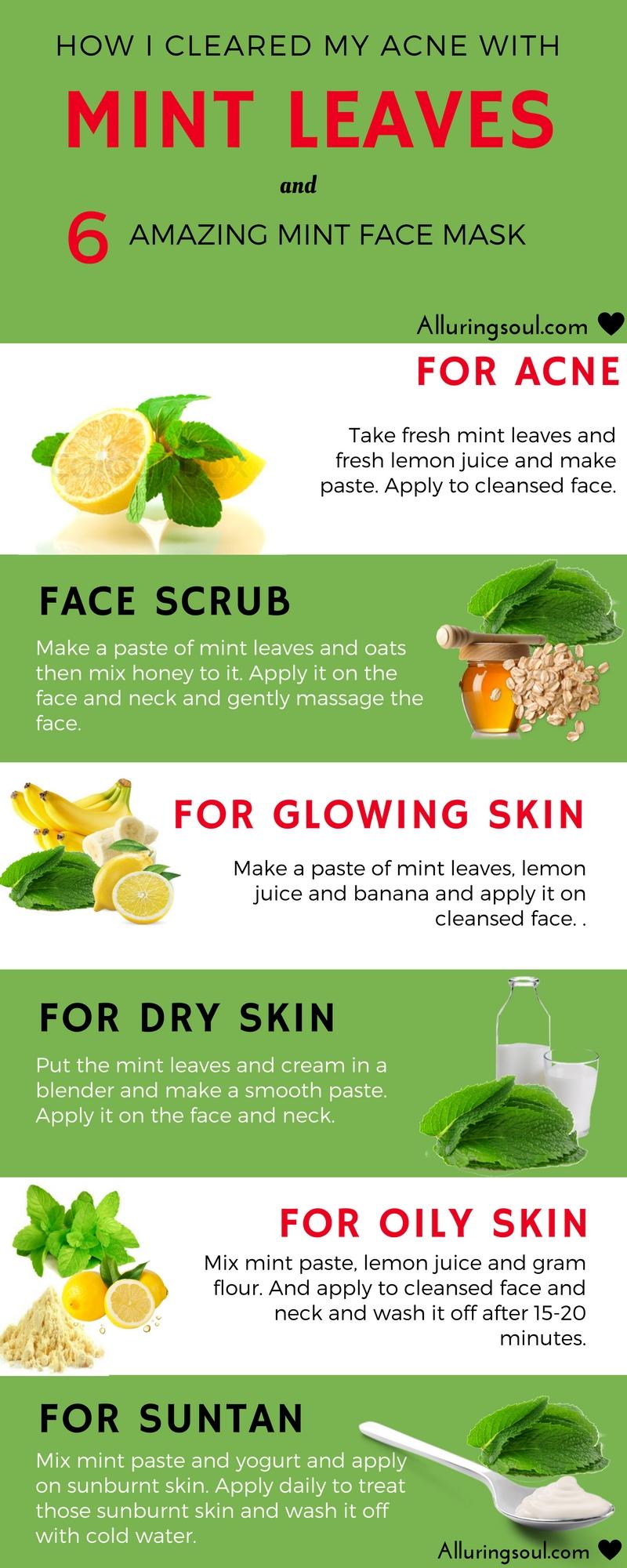 homemade mint face pack
