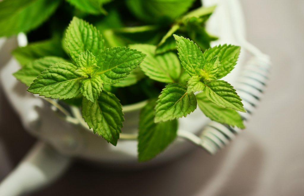Mint Face Mask For Acne